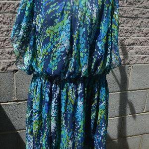 dress 2x  Olivia Matthews